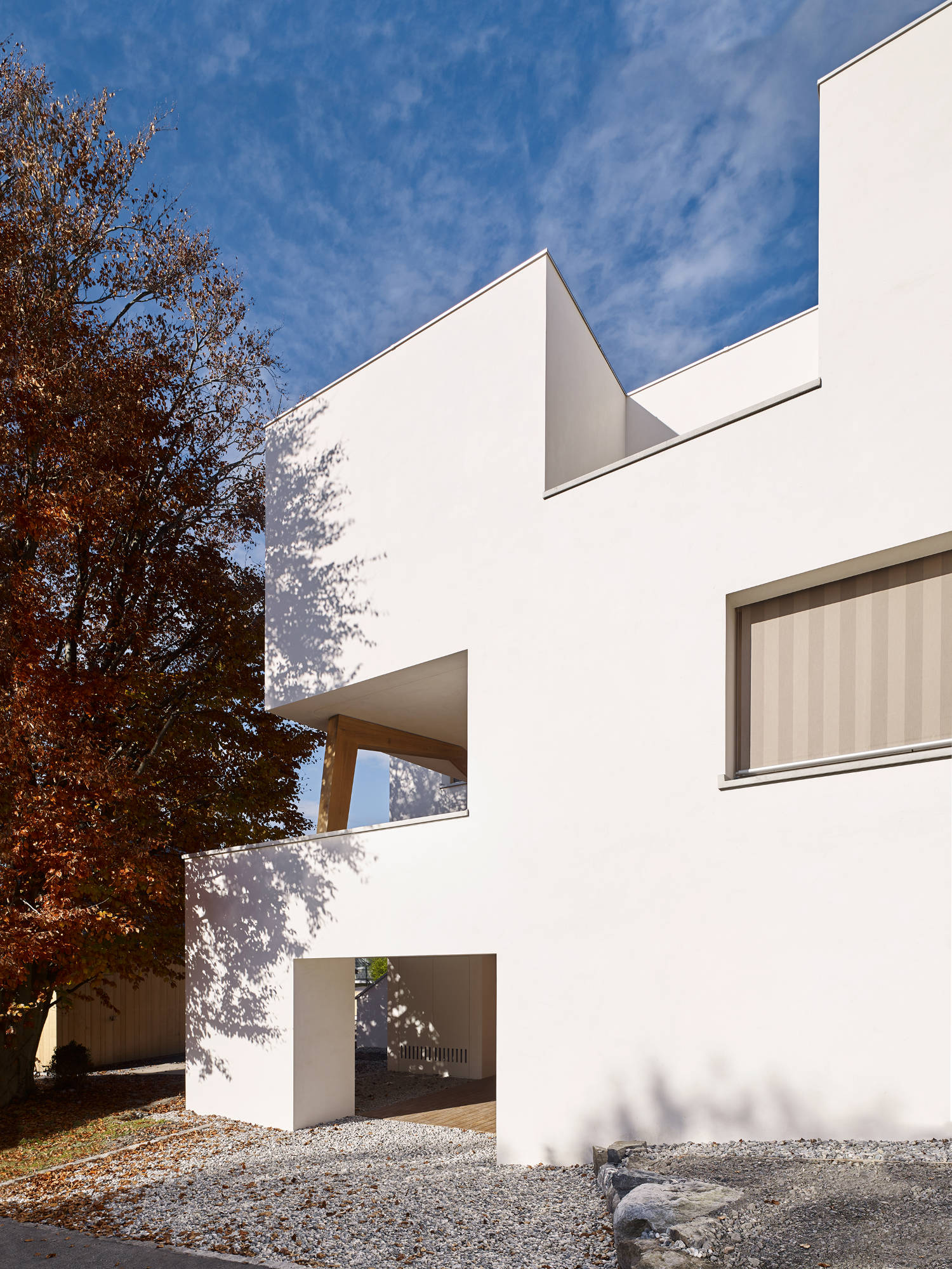 Haus Holdergasse, Fassade im Herbst, BE Architekten, Olex, Marc Lins